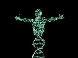 Epigenetics andtransgenerational inheritance